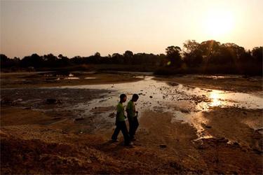 Eco News South Africa