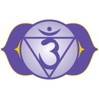 Chakra system