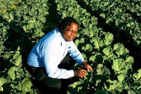 growing crops