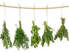 Herb Sales